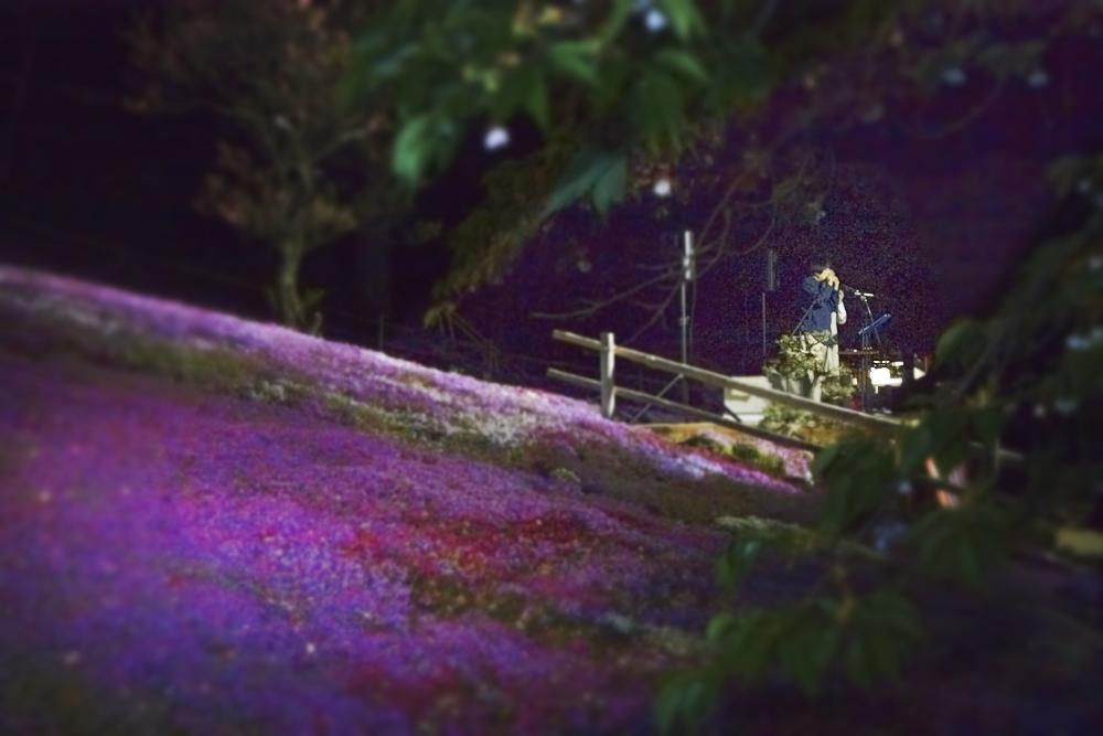 幻想的な夜の音楽会