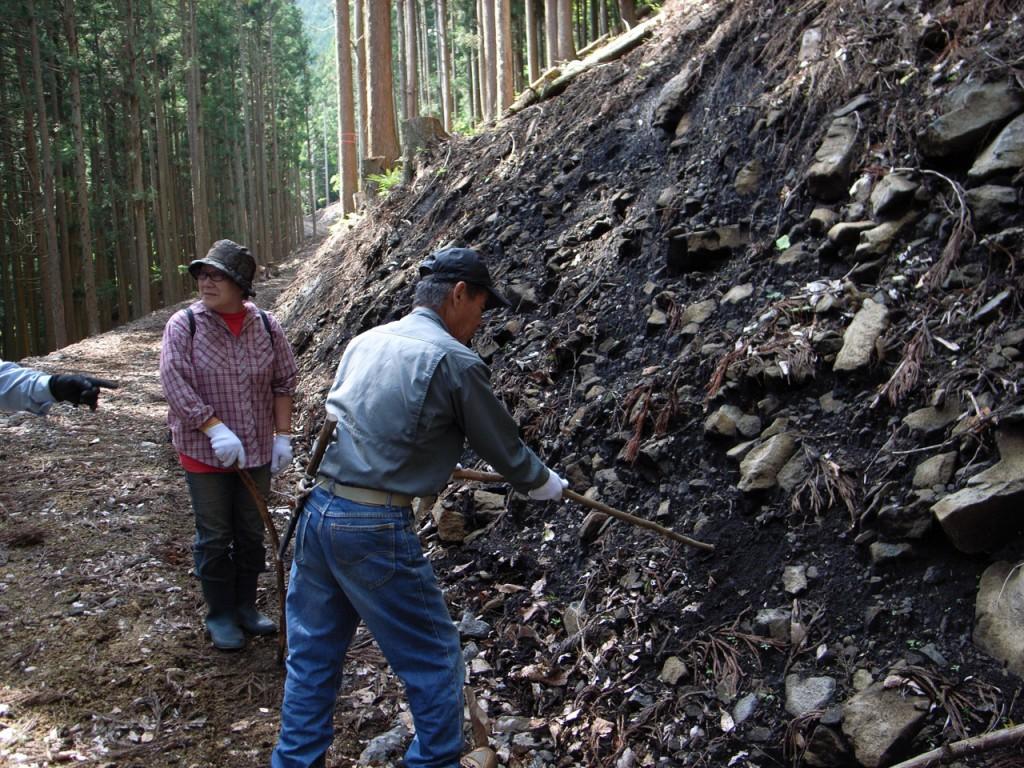 周りの土には黒くてふわふわの火山灰が含まれています