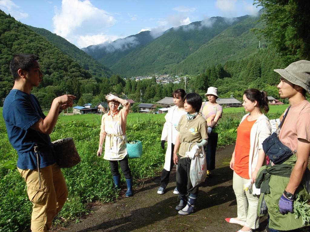 【触覚】地元民宿のおかみさんや講師のガイドで歩きながら、染めに使う植物採取